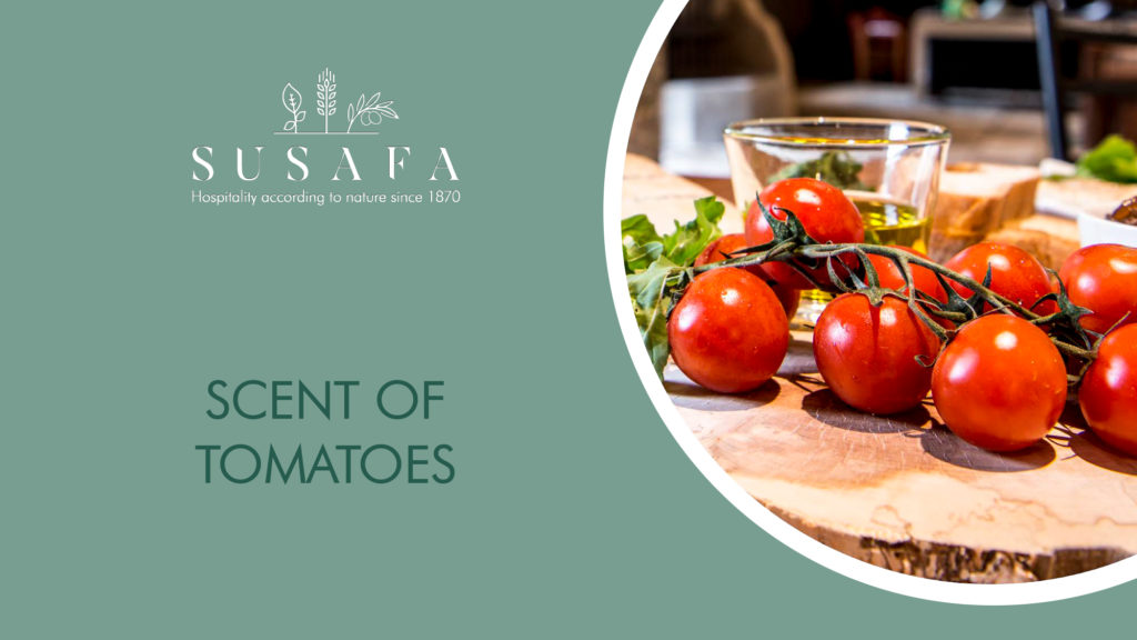 Scent of tomatoes